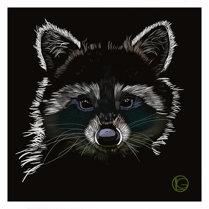 Portrait raton laveur en illustration digitale